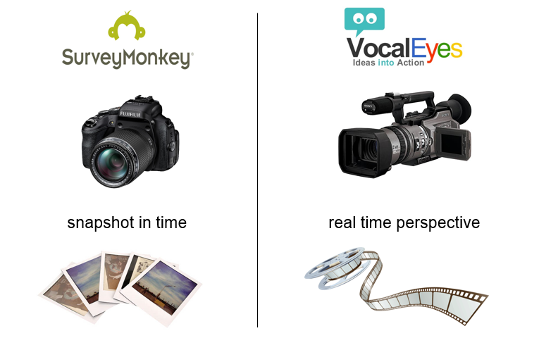 Comparison survey monkey vs vocaleyes